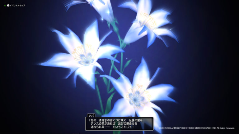 テンスの花